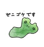 ゼニゴケちゃん(個別スタンプ:01)