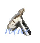 猫ピアニスト(個別スタンプ:07)