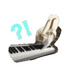 猫ピアニスト(個別スタンプ:08)