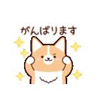 いたわりコーギー5【やさしい敬語】(個別スタンプ:06)
