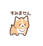 いたわりコーギー5【やさしい敬語】(個別スタンプ:09)