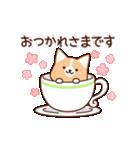 いたわりコーギー5【やさしい敬語】(個別スタンプ:16)