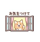 いたわりコーギー5【やさしい敬語】(個別スタンプ:20)