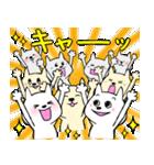 広島の野球を熱烈応援(個別スタンプ:22)
