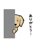 ハッピーゴールデン(個別スタンプ:05)