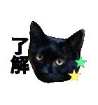 ひなもか(個別スタンプ:04)