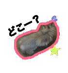 ひなもか(個別スタンプ:05)