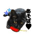 ひなもか(個別スタンプ:18)