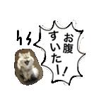 ひなもか(個別スタンプ:26)