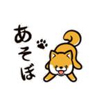 動く!柴犬マロン(個別スタンプ:06)