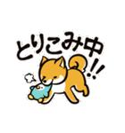 動く!柴犬マロン(個別スタンプ:15)