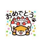 動く!柴犬マロン(個別スタンプ:24)