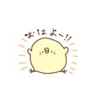 きみピヨ3(個別スタンプ:01)