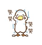 OK,Duck!(個別スタンプ:11)