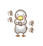 OK,Duck!(個別スタンプ:30)