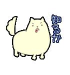 ポメ太くん(個別スタンプ:01)