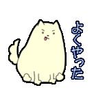 ポメ太くん(個別スタンプ:16)