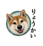 さすが!柴犬【万能型】(個別スタンプ:05)