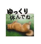 さすが!柴犬【万能型】(個別スタンプ:14)