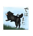 さすが!柴犬【万能型】(個別スタンプ:16)