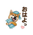 さすが!柴犬【万能型】(個別スタンプ:37)