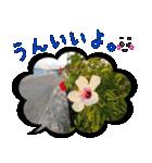 写真のふきだし(個別スタンプ:04)