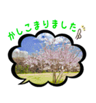写真のふきだし(個別スタンプ:05)