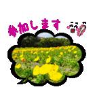 写真のふきだし(個別スタンプ:16)