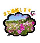写真のふきだし(個別スタンプ:33)