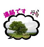 写真のふきだし(個別スタンプ:34)