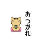 動くよ!キジトラにゃんこ(個別スタンプ:03)