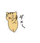 動くよ!キジトラにゃんこ(個別スタンプ:05)