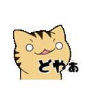 動くよ!キジトラにゃんこ(個別スタンプ:07)