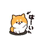 お返事シバイヌくん(個別スタンプ:01)