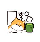 お返事シバイヌくん(個別スタンプ:05)
