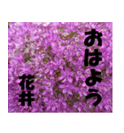 花井さんの名前スタンプ(個別スタンプ:2)