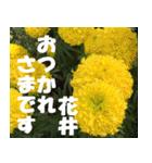 花井さんの名前スタンプ(個別スタンプ:5)