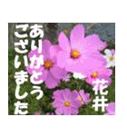 花井さんの名前スタンプ(個別スタンプ:6)