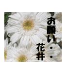 花井さんの名前スタンプ(個別スタンプ:7)