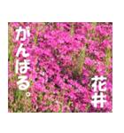 花井さんの名前スタンプ(個別スタンプ:9)
