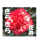 花井さんの名前スタンプ(個別スタンプ:28)
