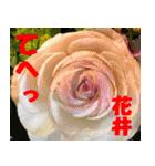 花井さんの名前スタンプ(個別スタンプ:30)