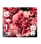 花井さんの名前スタンプ(個別スタンプ:31)