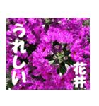 花井さんの名前スタンプ(個別スタンプ:39)