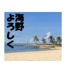 海野さんのスタンプ(個別スタンプ:01)