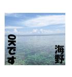 海野さんのスタンプ(個別スタンプ:02)