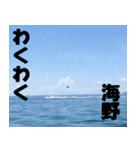 海野さんのスタンプ(個別スタンプ:03)