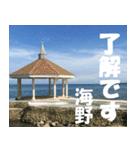 海野さんのスタンプ(個別スタンプ:09)
