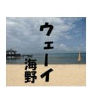 海野さんのスタンプ(個別スタンプ:13)