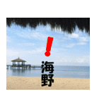 海野さんのスタンプ(個別スタンプ:14)